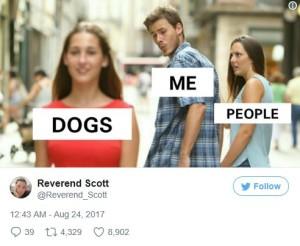 Distracted meme