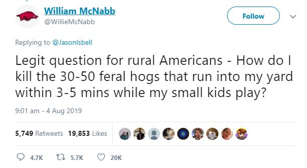 feral hog original tweet