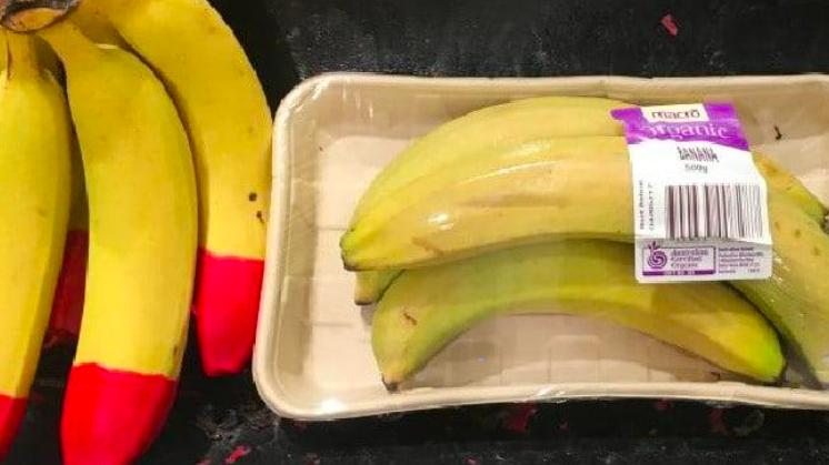 single use plastic bad