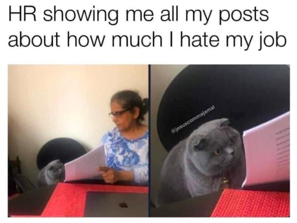 HR memes