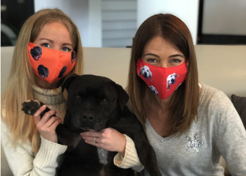 wearing pet face masks with cute puppy